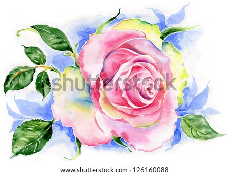 Watercolor rose flower - stock photo