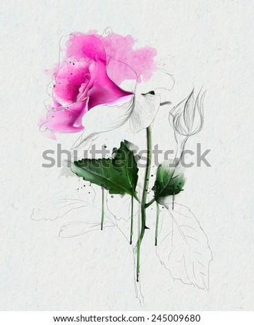 Watercolor roses, with place for your text - stock photo