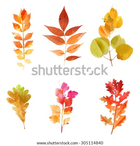 watercolor set of autumn leaves - stock photo