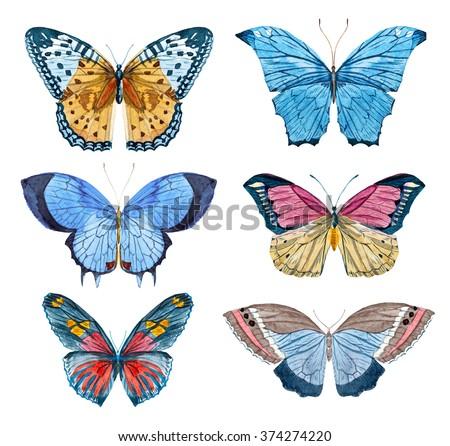 watercolor set of butterflies and moth, white background - stock photo