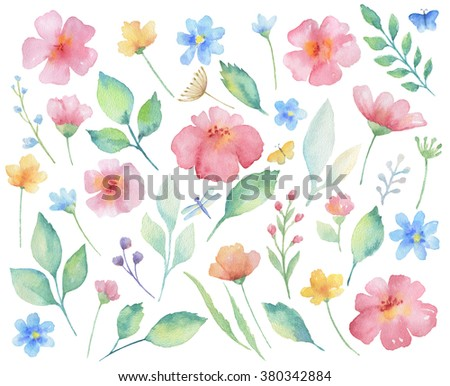 Watercolor set of flowers, leaves, branches and butterflies. Elements for design on white background. - stock photo