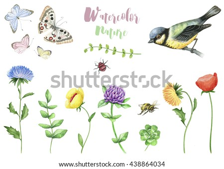Watercolor set of nature elements. Butterflies, flowers, insects and bird - stock photo