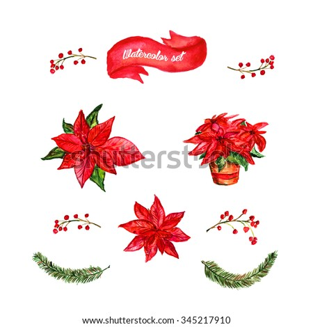 Watercolor set of winter flowers.Upper and front view.  Red Flower Euphorbia pulcherrima. Christmas floral decoration. Dry grass with berries and Christmas tree green branches. Red ribbon. - stock photo