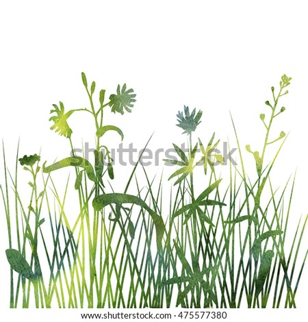 watercolor silhouettes of flowers and grass, background with wild plants, herbal backdrop, artistic floral template, hand drawn illustration