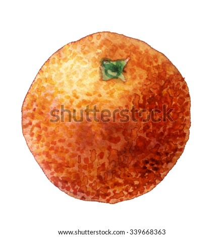 watercolor sketch: a orange on a white background