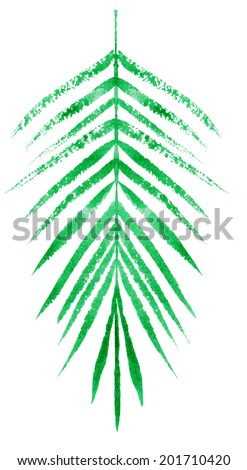 watercolor sketch of a green palm leaf on a white background - stock photo