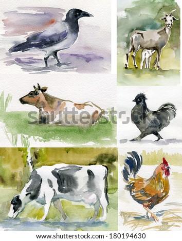 watercolor sketches pets, animals, farm  - stock photo