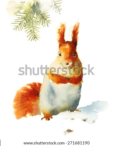 Watercolor Squirrel Sitting On The Snow - Hand Drawn Illustration of animal isolated on white background - stock photo