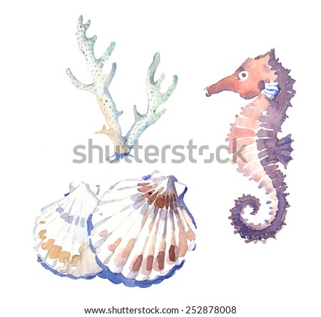 Watercolor-style marine illustration set - shells, coral and seahorse