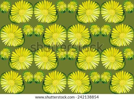 Watercolor succulent. Floral pattern - stock photo