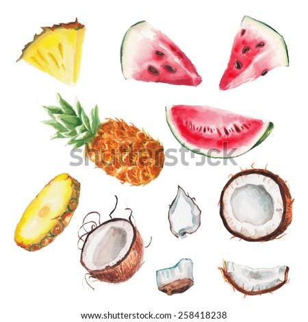 watercolor summer fruiits set - stock photo