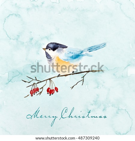Watercolor Tit on a Winter Berry Sprig (hand drawn) Watercolor Christmas Card (hand drawn)