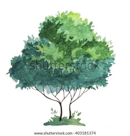 watercolor tree - stock photo