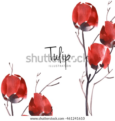 Watercolor tulip flower background. Drawn nature painting art.
