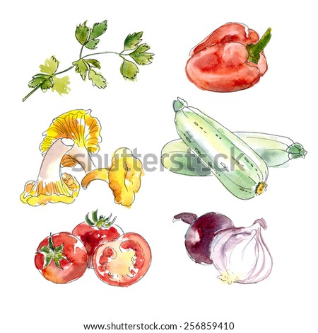 Watercolor Vegetable Collection. Hand painted Illustration isolated on white