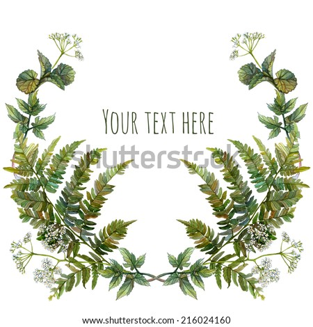 Watercolor wreath or garland with inscription. Forest growth on white background. Green fern leaves, wild aegopodium white flowers. Can be used as invitation or greeting card, print - stock photo