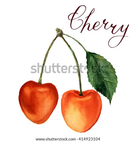"""Watercolor yellow cherries with leaf and lettering """"Cherry"""". Hand drawn food illustration on white background. For design, textile and background. Realistic illustration. - stock photo"""