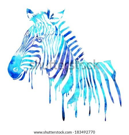 Watercolor zebra head - abstract animal illustration isolated on white - stock photo