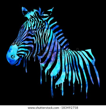 Watercolor zebra head - abstract animal illustration on black - stock photo