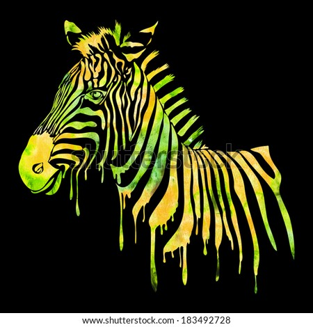 Watercolor zebra head - abstract animal illustration on black in green and yellow - stock photo