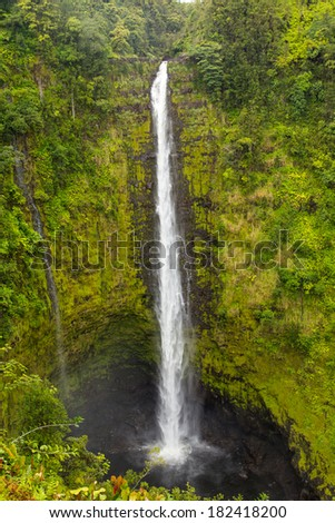 Waterfall - Akaka falls Hawaii, Big Island. Famous Hawaiian waterfall close - stock photo