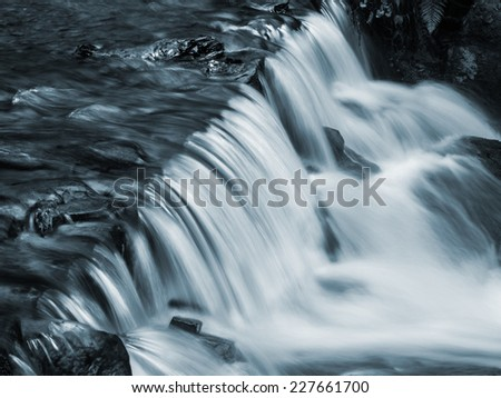 Waterfall and forest stream in the Carpathian mountains. Ukraine. Europe