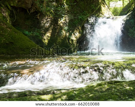 Waterfall and forests