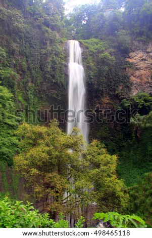 Waterfall in a rain-forest