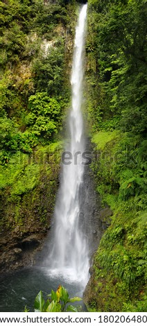 Waterfall in a Rain Forest, Dominica, Caribbean islands. Middleham Falls, Laudat Village, Morne Trois Pitons National Park  - stock photo