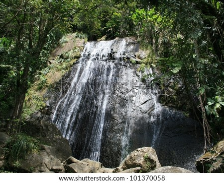 Waterfall in a rain forest, El Yunque National Forest, Puerto Rico - stock photo