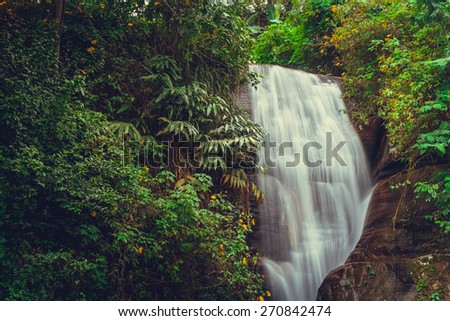Waterfall in deep forest near Nuwara Eliya in Sri Lanka. - stock photo