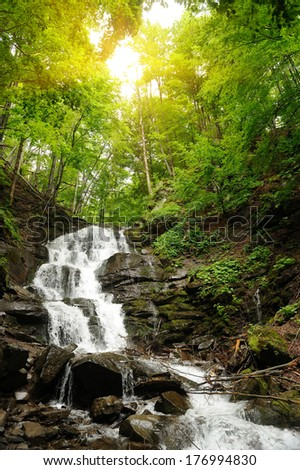 Waterfall in forest. In the deep forest on mountain - stock photo