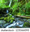 Waterfall in green forest - stock photo
