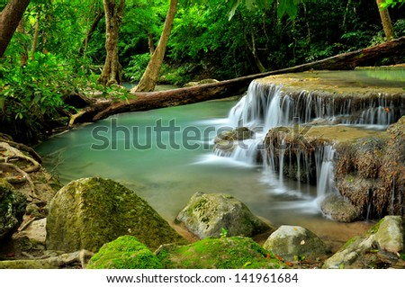 Waterfall in Green Forests