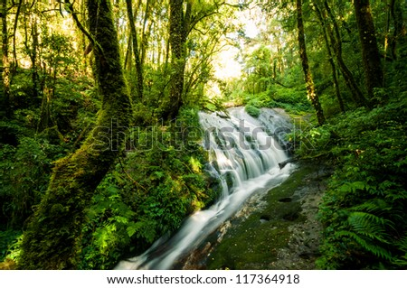 Waterfall in hill evergreen forest of Doi Inthanon, Chiang Mai, Thailand - stock photo