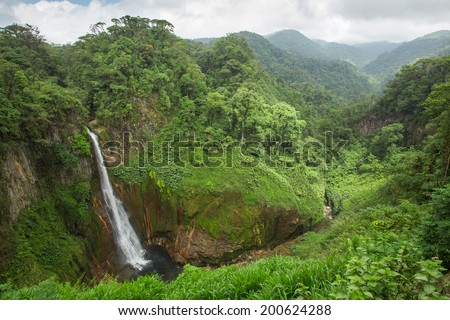 Waterfall in Juan Castro Blanco, National Park, Costa RIca - stock photo