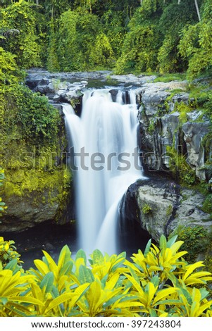 waterfall in jungles - stock photo