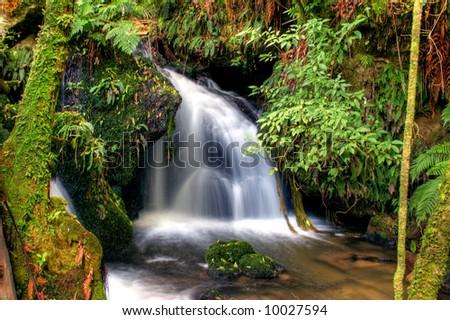 Waterfall in New Zealand - stock photo