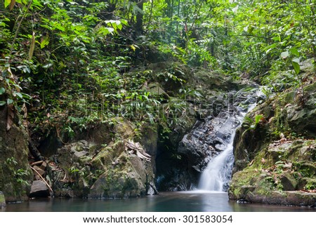 Waterfall in Secluded Rain Forest Creek - stock photo