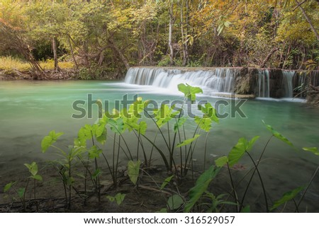 Waterfall in Thailand tropical forest