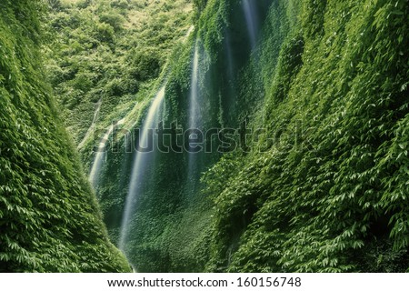Waterfall in the deep forest on mountain - stock photo
