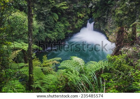 waterfall in the forest, New Zealand - stock photo