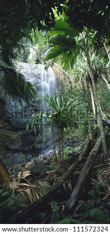 Waterfall in the jungle - stock photo