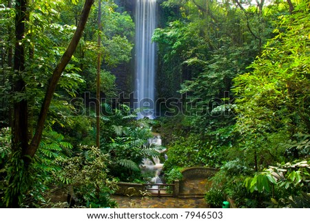 Waterfall  in the jungle - stock photo