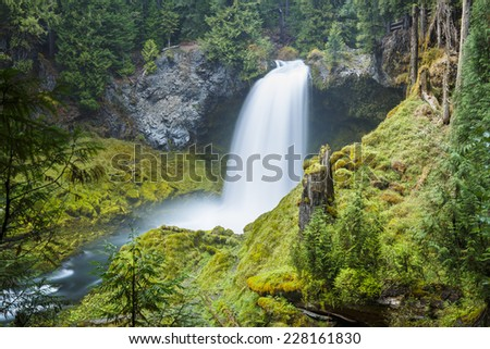Waterfall in the northwest cascading down in the green ferns - stock photo