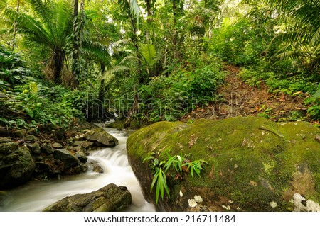 Waterfall in the wild jungle in the borderland of Panama and Colombia - stock photo