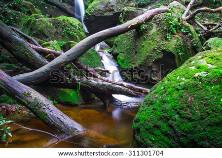 Waterfall with moss rock in tropical rain forest