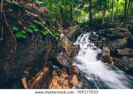 Waterfall with rocks and leaves