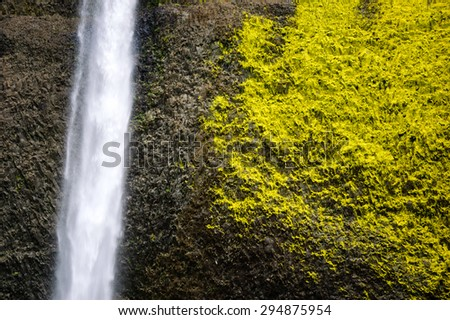 Waterfall with Textured Lime Green Moss at Columbia, Columbia Gorge - stock photo