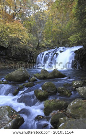 Waterfall With The Autumn Leaves
